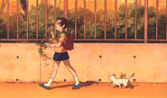 Yuki following Haru