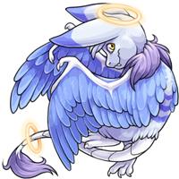 Lasirus angelic