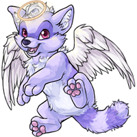 Terracoon angelic