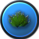 File:Green Grass.png