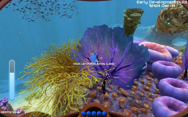 File:Purple fan.jpg
