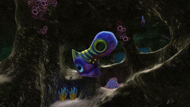 File:Holefish in MF Cave 10.jpg