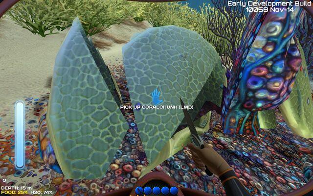 File:Material coral chunk.jpg