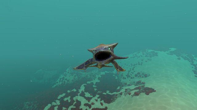 File:Bone Shark (1).jpg