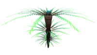 Fern Palm Flora.png