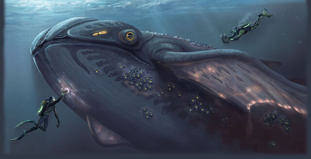 File:WhaleMonster1.jpg