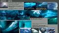 BiosphereSheet Arctic page01.jpg
