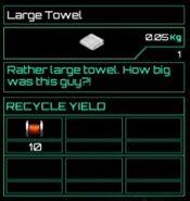 Large Towel