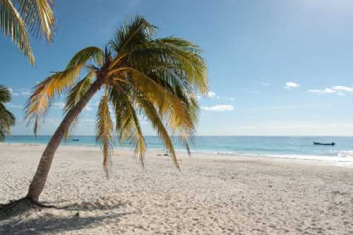 File:Florida-Beaches.jpg