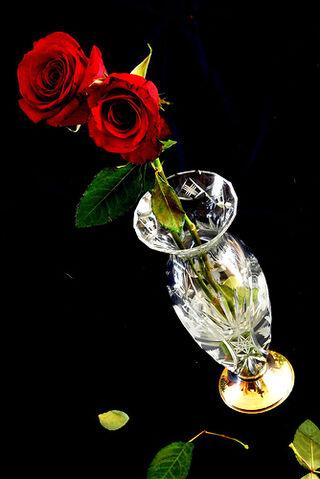 File:Rosas.jpg