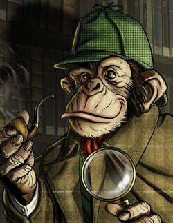 Det chimp small