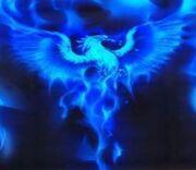 Blue-phoenix-atrobuet-phoenix-23527375-1023-887