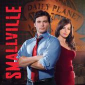 File:Smallville Season 8.jpeg