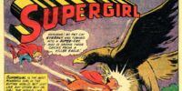 Supergirl's Super Pet!