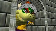 Bowser's Grandmother