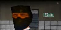 The Butt Ninja