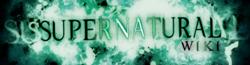 Supernatural Wiki-wordmark-1-
