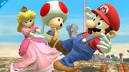 Peach's Toad and Mario
