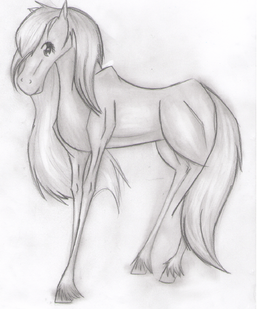 Fortuna The Horse