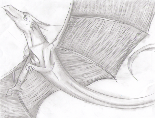 File:Dragon Drawing3.png