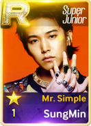 MR Simple Sungmin