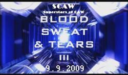 250px-BloodSweatTears3999