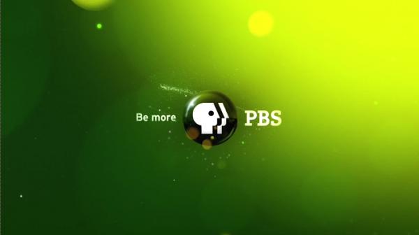 File:PBS Logo 2010.png