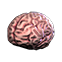 File:Ss13brain (uncommon).png