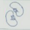 File:Kidney Icon.png