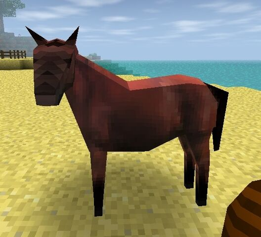 File:Bay Horse.jpg