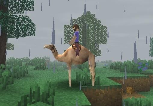 File:Camel riding.jpg