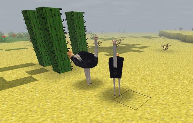 File:Ostrich verhistory.jpg