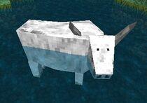 Bullwhite
