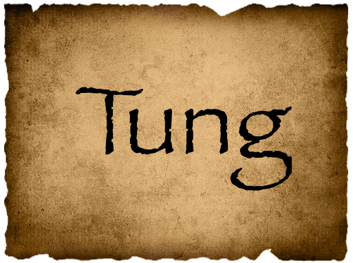 File:TungVote.png