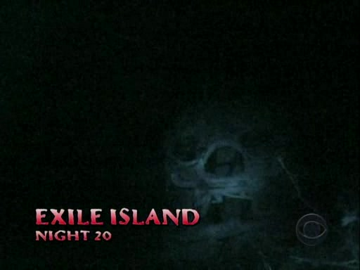 File:Survivor.Panama.Exile.Island.s12e09.The.Power.of.the.Idol.PDTV 066.jpg