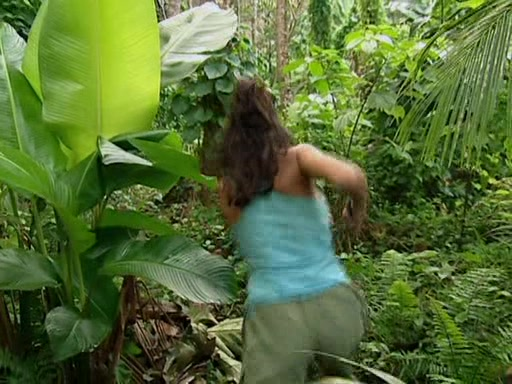 File:Survivor.Vanuatu.s09e02.Burly.Girls,.Bowheads,.Young.Studs,.and.the.Old.Bunch.DVDrip 239.jpg