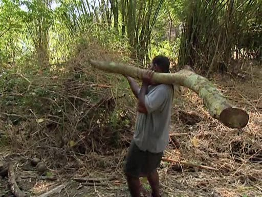 File:Survivor.Vanuatu.s09e05.Earthquakes.and.Shake-ups!.DVDrip 287.jpg