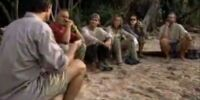 Survivor Folklore