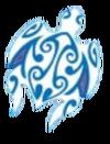 Salani insignia