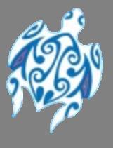 File:Salani insignia.png