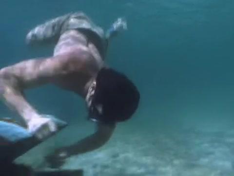 File:Survivor.S07E02.DVDRip.x264 042.jpg