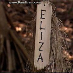 Eliza's torch