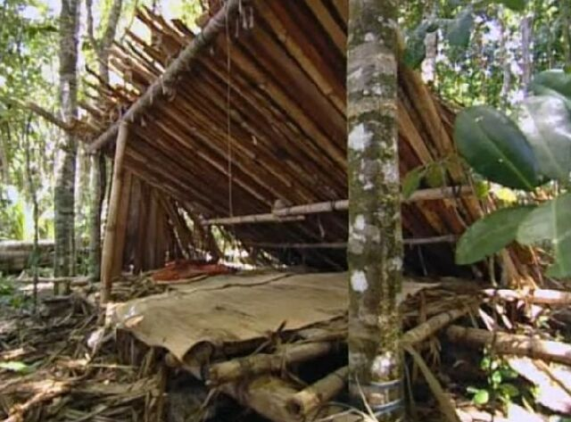 File:Pagong camp.jpg
