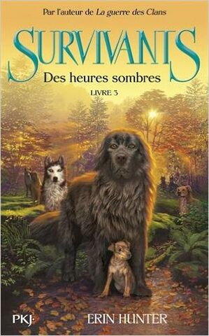 File:Survivors darkness falls french.jpg
