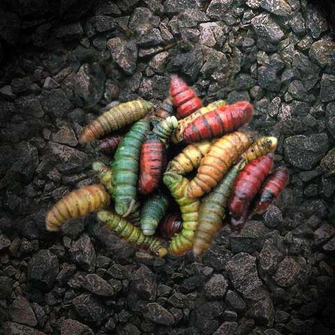 File:Torian Bloodworm.jpg
