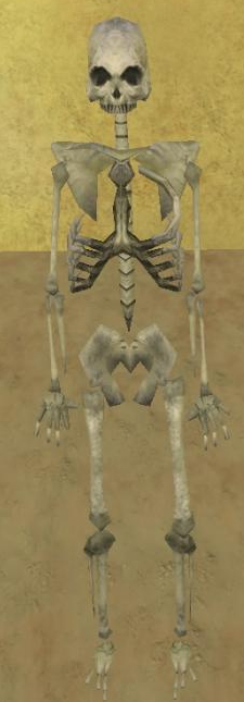 Tmp replica skeleton