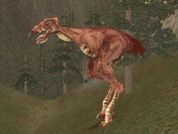 Red carrion spat