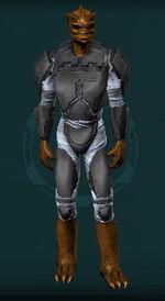 Warden-tosk
