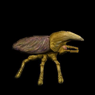 Swgpets-horned krevol