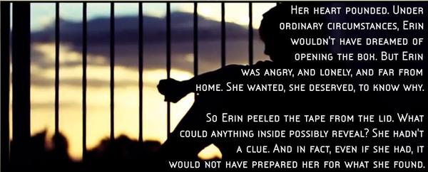 Erin quote